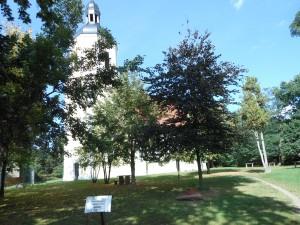 Radfahrerkirche Weßnig