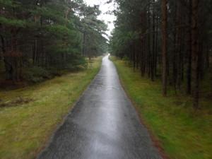 Radweg auf der Schaabe