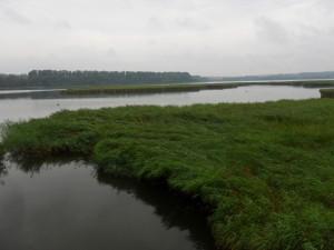 Spykerscher See