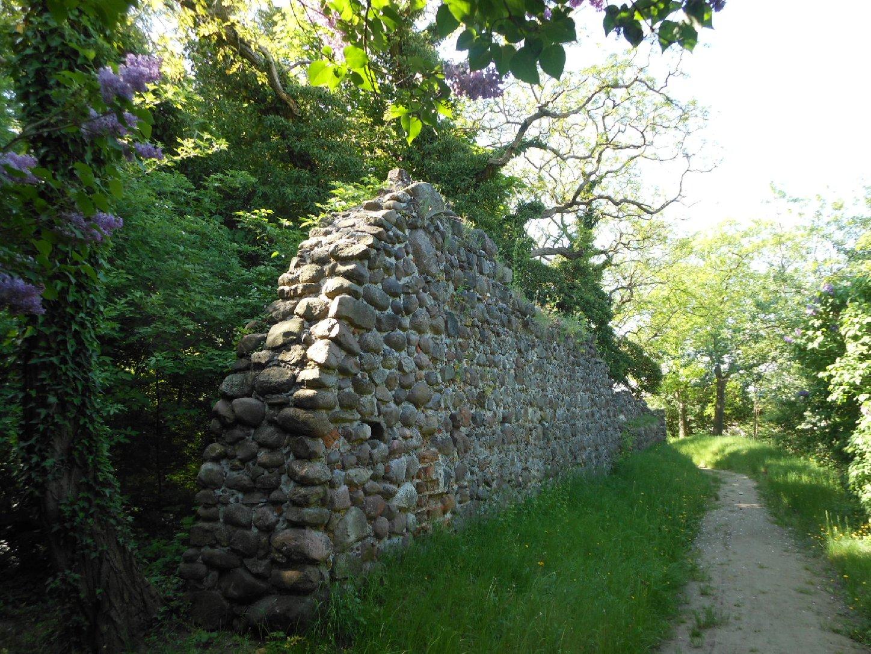 Reste der Arneburg