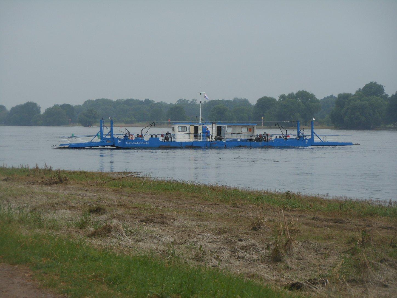 Elbe-Fähre Ronney