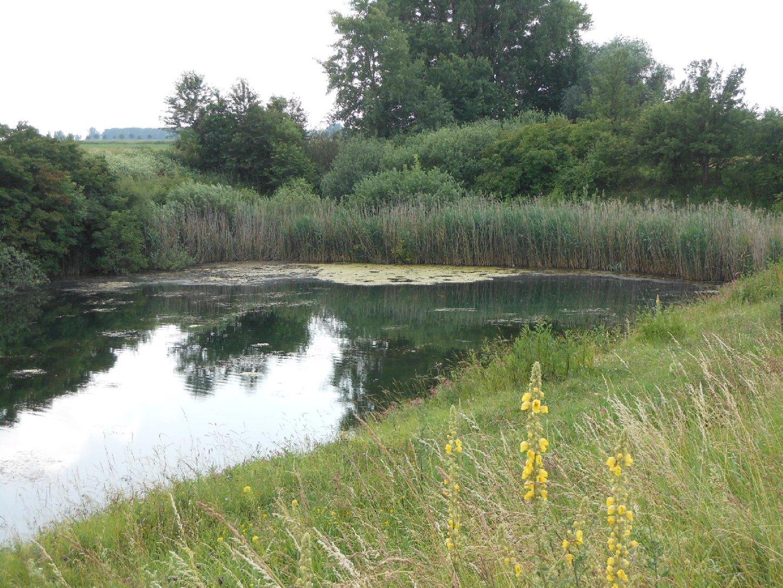 Kanalende Günthersdorf