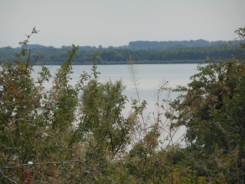 Raßnitzer See