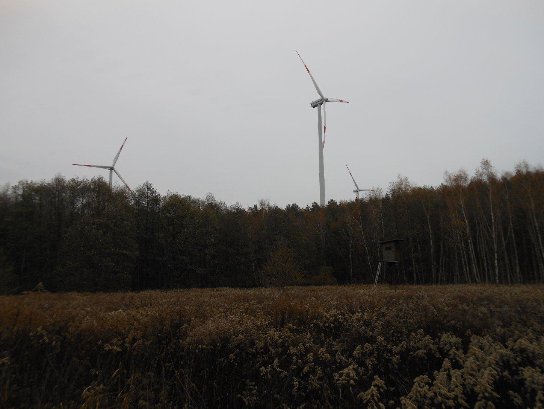 Windkraftwerk Zerre