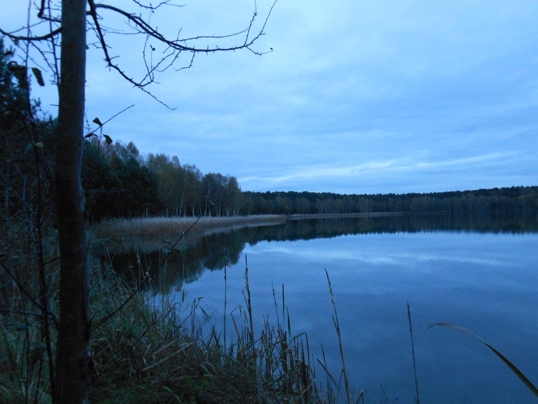 Teich bei Hartmannsdorf