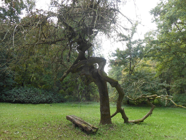 Park Neugattersleben