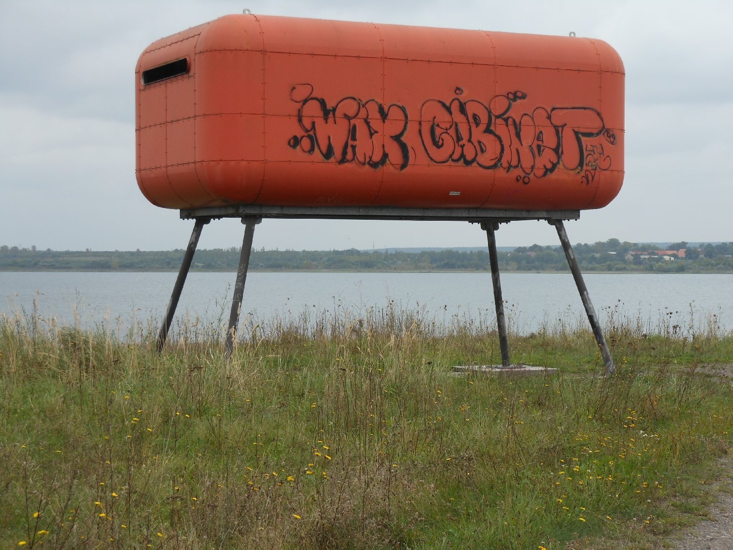 Container am See