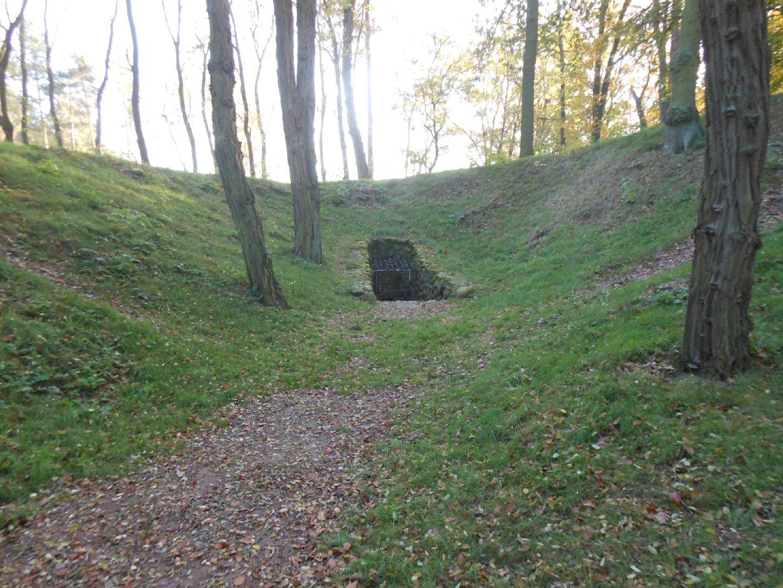 Königsgrab bei Seddin