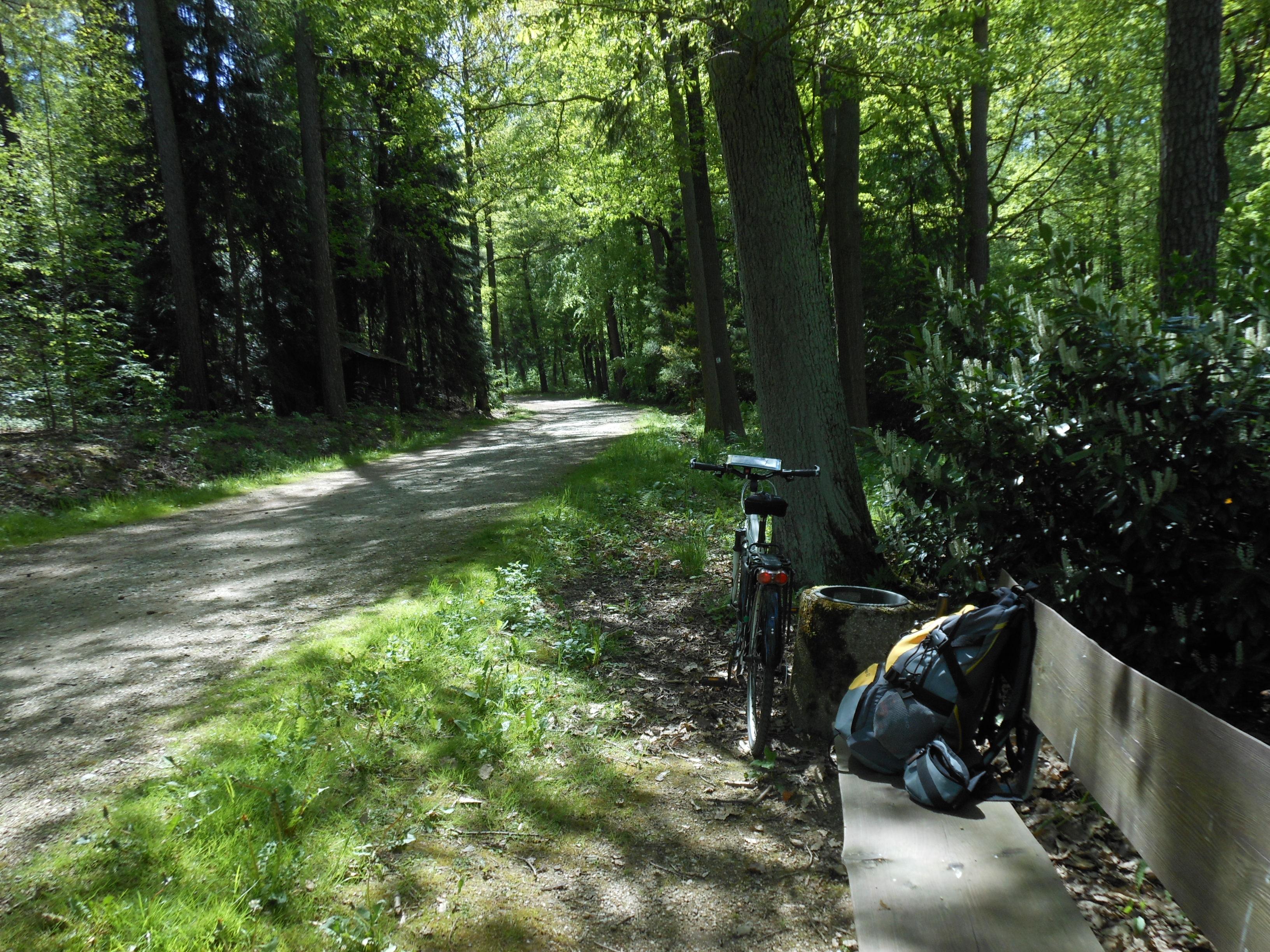 Weissenborner Wald